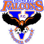 South Bay Falcons