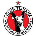 Xolos Academy FC